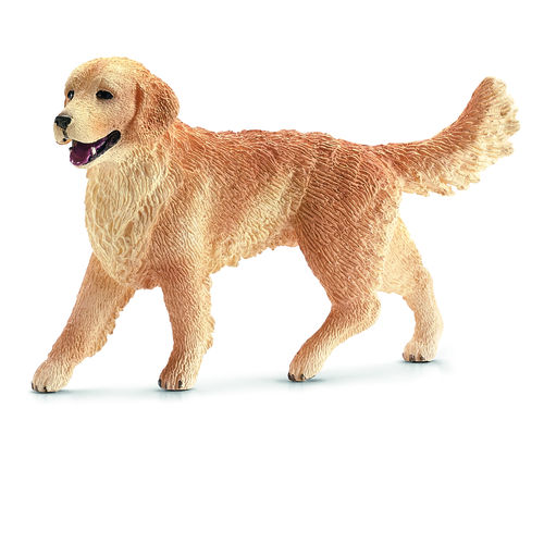 GOLDEN RETRIEVER FEMMINA