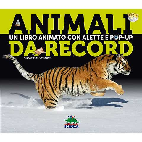 ANIMALI DA RECORD POP-UP